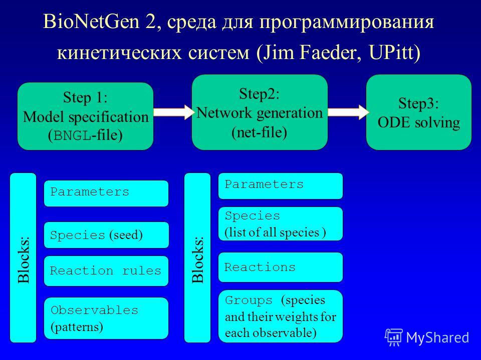 BioNetGen 2, среда для программирования кинетических систем (Jim Faeder, UPitt) Step 1: Model specification ( BNGL -file) Step2: Network generation (net-file) Step3: ODE solving Species (seed) Reaction rules Parameters Observables (patterns) Blocks: