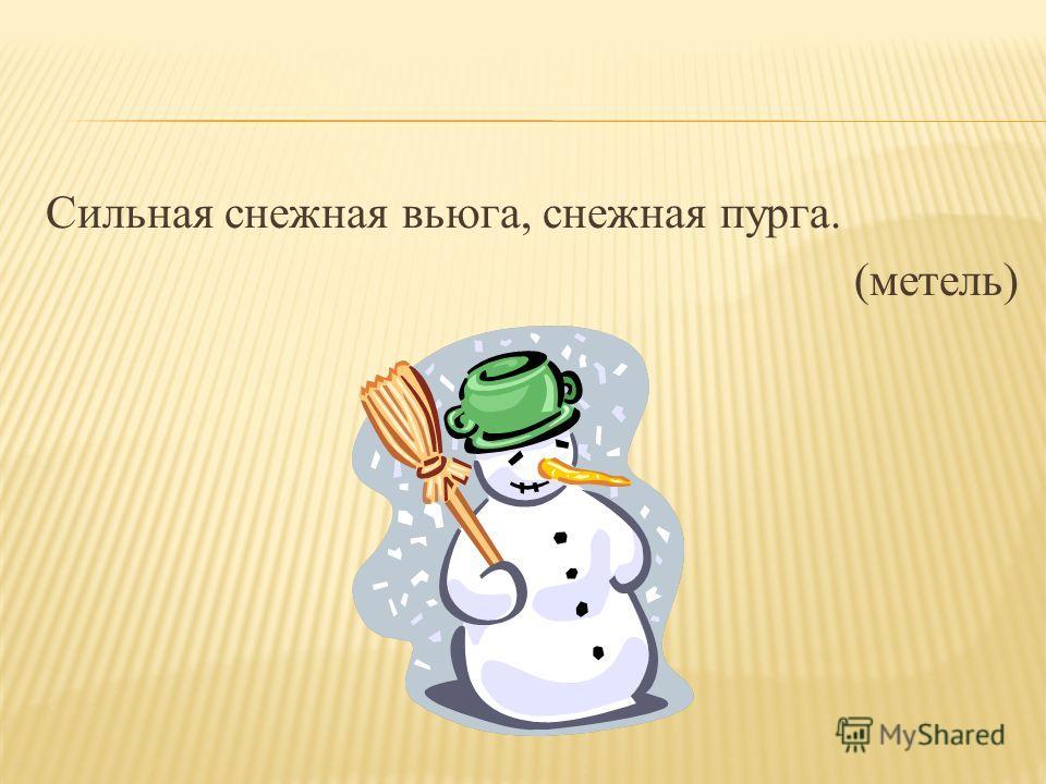 Сильная снежная вьюга, снежная пурга. (метель)