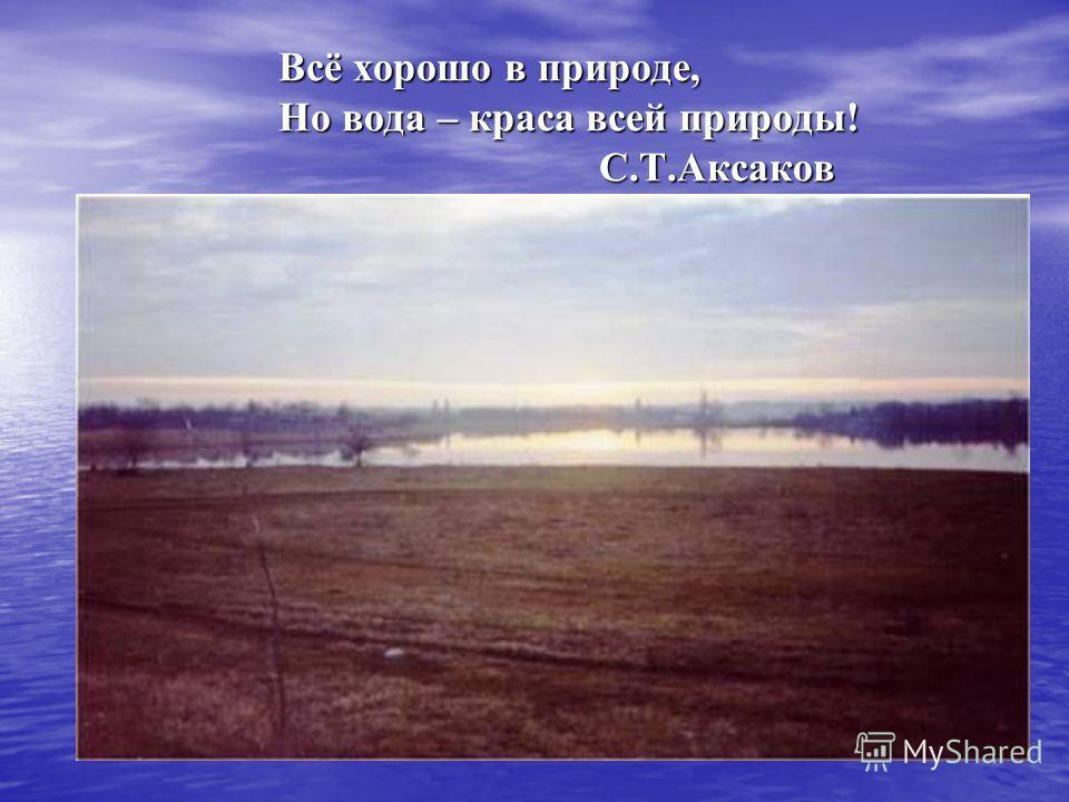 Всё хорошо в природе, Но вода – краса всей природы! С.Т.Аксаков