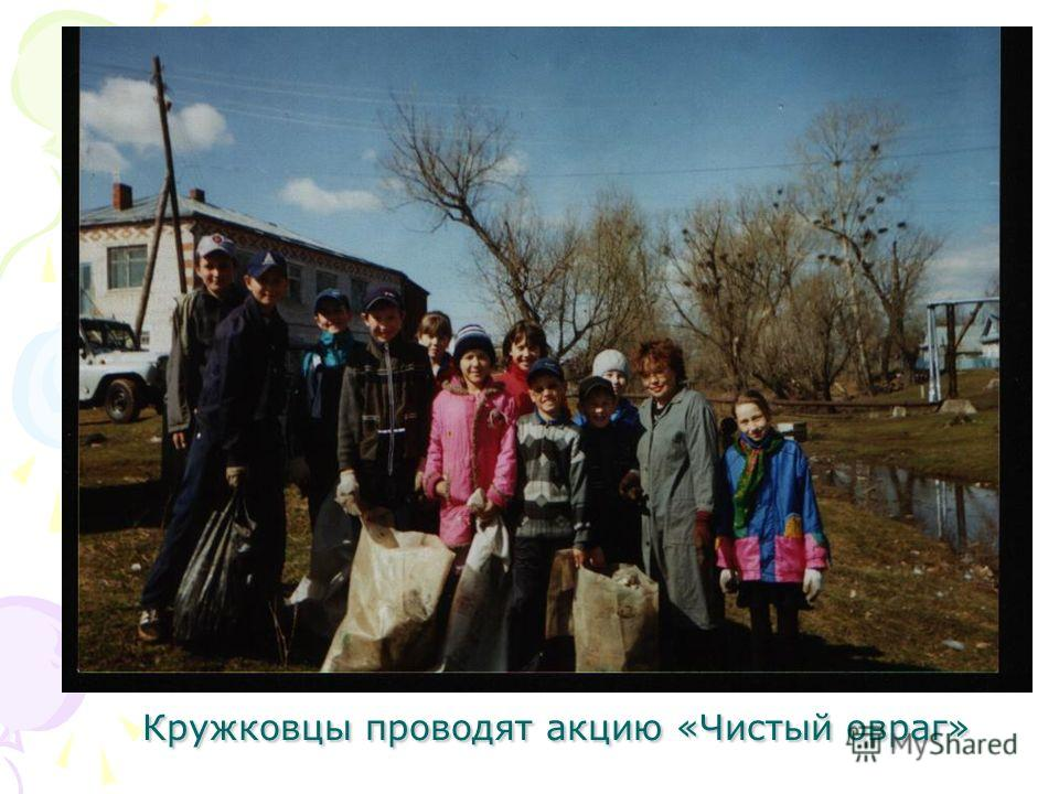 Кружковцы проводят акцию «Чистый овраг»