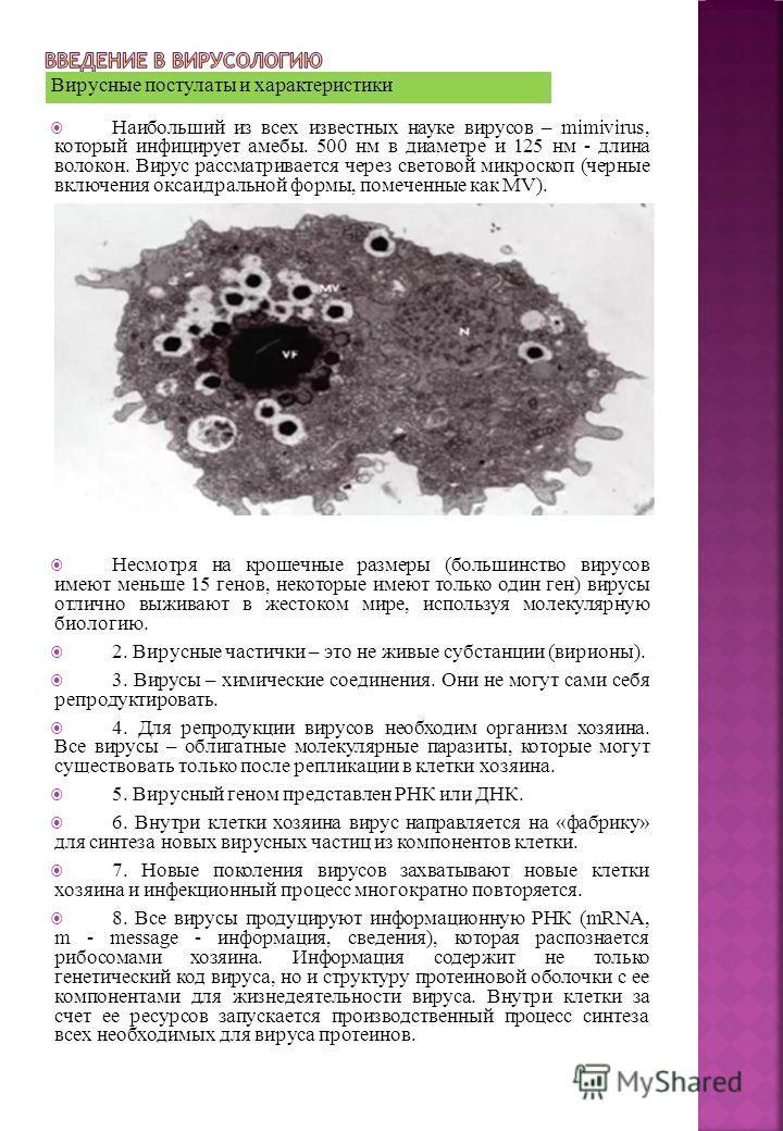Вирусные постулаты и характеристики Наибольший из всех известных науке вирусов – mimivirus, который инфицирует амебы. 500 нм в диаметре и 125 нм - длина волокон. Вирус рассматривается через световой микроскоп (черные включения оксаидральной формы, по