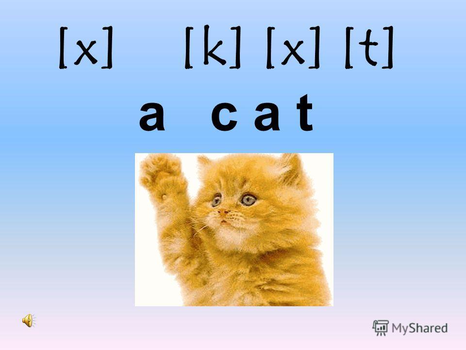 [x] [k] [x] [t] a c a t