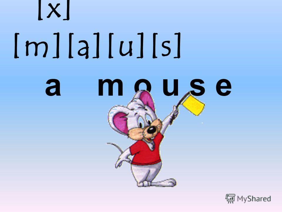 [x] [m][a][u][s] a m o u s e