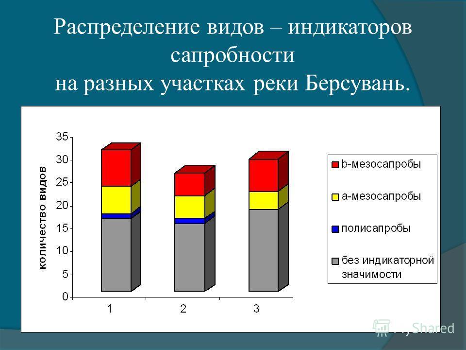 Распределение видов – индикаторов сапробности на разных участках реки Берсувань.