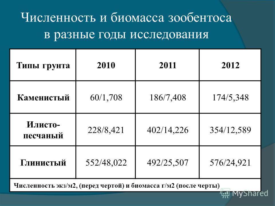 Численность и биомасса зообентоса в разные годы исследования Типы грунта201020112012 Каменистый60/1,708186/7,408174/5,348 Илисто- песчаный 228/8,421402/14,226354/12,589 Глинистый552/48,022492/25,507576/24,921 Численность экз/м2, (перед чертой) и биом