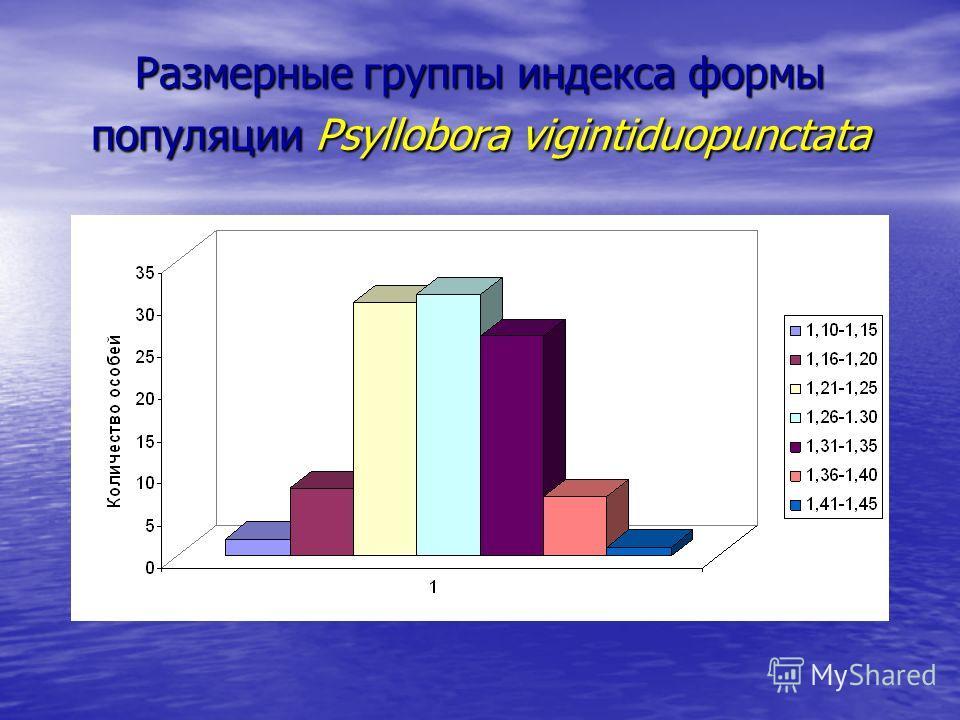 Размерные группы индекса формы популяции Psyllobora vigintiduopunctata
