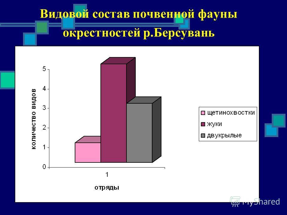 Видовой состав почвенной фауны окрестностей р.Берсувань