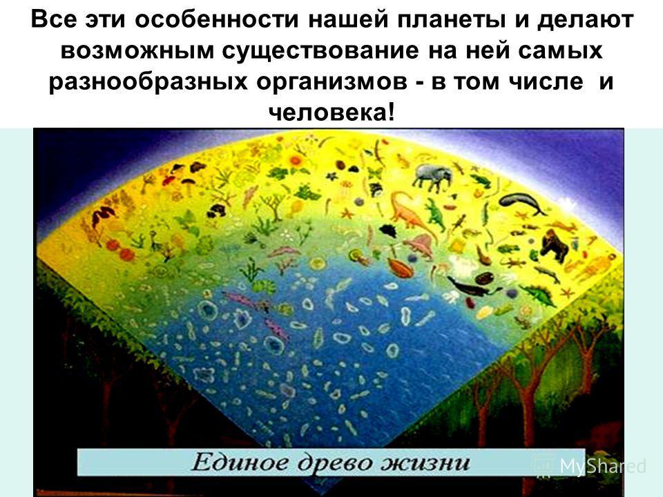 Только наша планета имеет почву