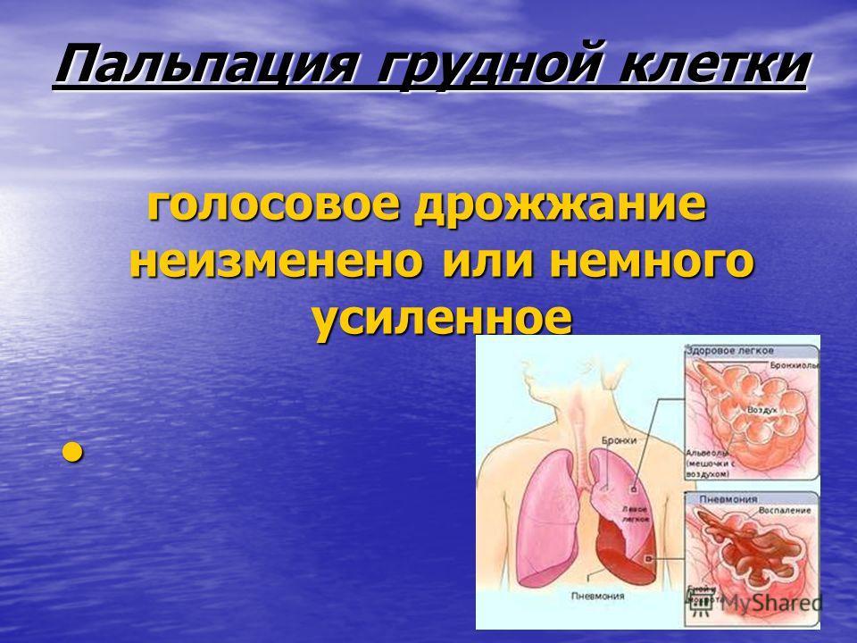 Пальпация грудной клетки голосовое дрожжание неизменено или немного усиленное