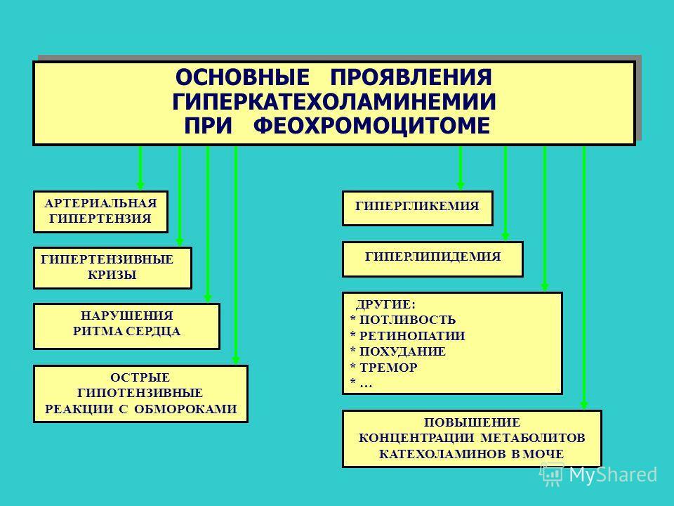 ОСНОВНЫЕ ПРОЯВЛЕНИЯ ГИПЕРКАТЕХОЛАМИНЕМИИ ПРИ ФЕОХРОМОЦИТОМЕ ОСНОВНЫЕ ПРОЯВЛЕНИЯ ГИПЕРКАТЕХОЛАМИНЕМИИ ПРИ ФЕОХРОМОЦИТОМЕ АРТЕРИАЛЬНАЯ ГИПЕРТЕНЗИЯ ГИПЕРГЛИКЕМИЯ ГИПЕРТЕНЗИВНЫЕ КРИЗЫ ГИПЕРЛИПИДЕМИЯ НАРУШЕНИЯ РИТМА СЕРДЦА ДРУГИЕ: * ПОТЛИВОСТЬ * РЕТИНОПАТ