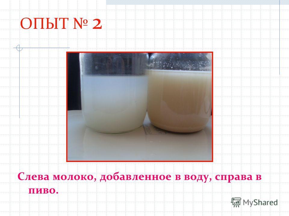 ОПЫТ 2 Слева молоко, добавленное в воду, справа в пиво.