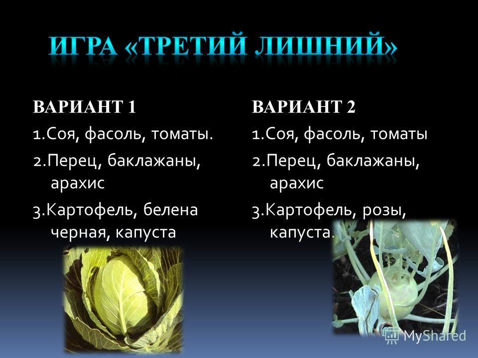ВАРИАНТ 1 1.Соя, фасоль, томаты. 2.Перец, баклажаны, арахис 3.Картофель, белена черная, капуста ВАРИАНТ 2 1.Соя, фасоль, томаты 2.Перец, баклажаны, арахис 3.Картофель, розы, капуста.