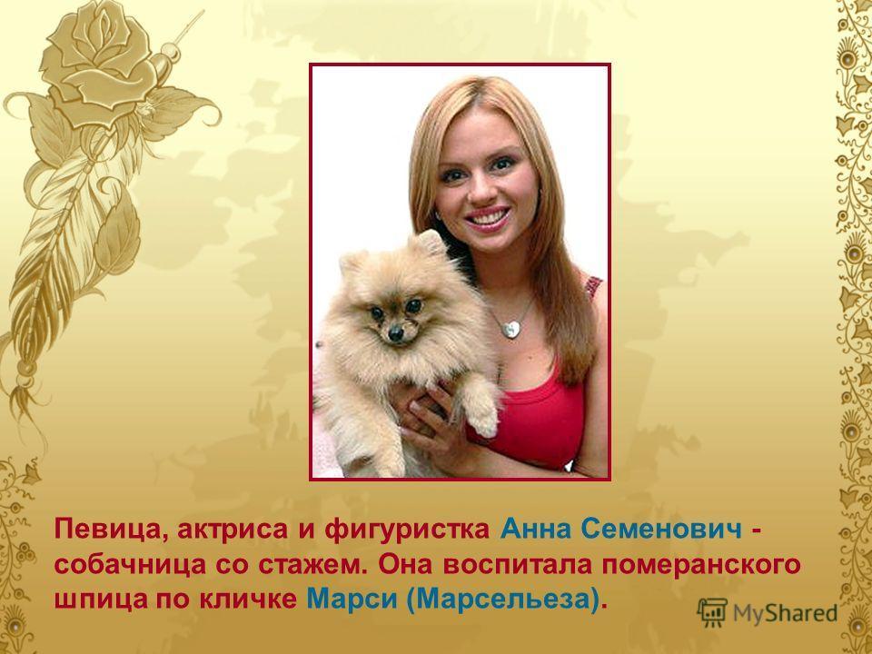 Певица, актриса и фигуристка Анна Семенович - собачница со стажем. Она воспитала померанского шпица по кличке Марси (Марсельеза).
