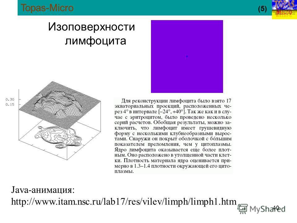 40 Изоповерхности лимфоцита Topas-Micro (5) Java-анимация: http://www.itam.nsc.ru/lab17/res/vilev/limph/limph1.htm