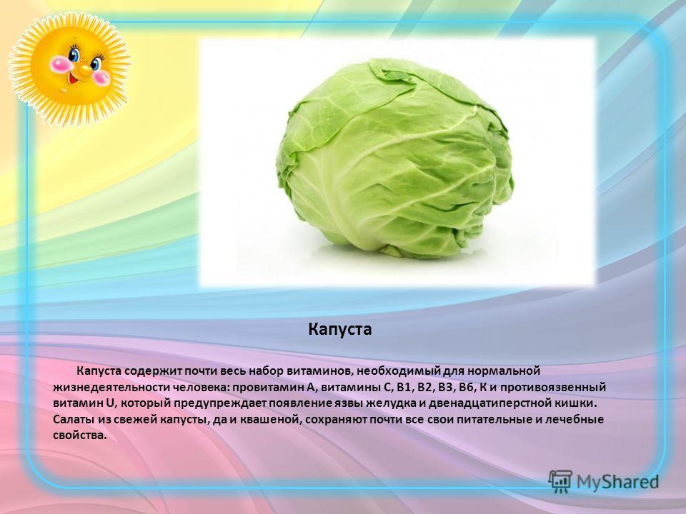 Капуста Капуста содержит почти весь набор витаминов, необходимый для нормальной жизнедеятельности человека: провитамин А, витамины С, В1, В2, В3, В6, К и противоязвенный витамин U, который предупреждает появление язвы желудка и двенадцатиперстной киш