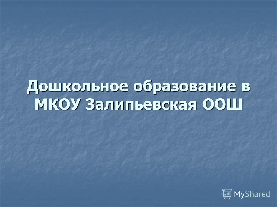 Дошкольное образование в МКОУ Залипьевская ООШ