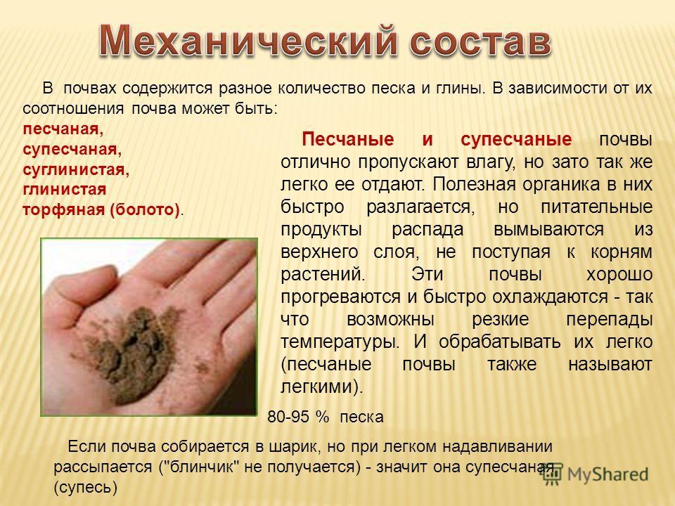 В почвах содержится разное количество песка и глины. В зависимости от их соотношения почва может быть: песчаная, супесчаная, суглинистая, глинистая торфяная (болото). Песчаные и супесчаные почвы отлично пропускают влагу, но зато так же легко ее отдаю