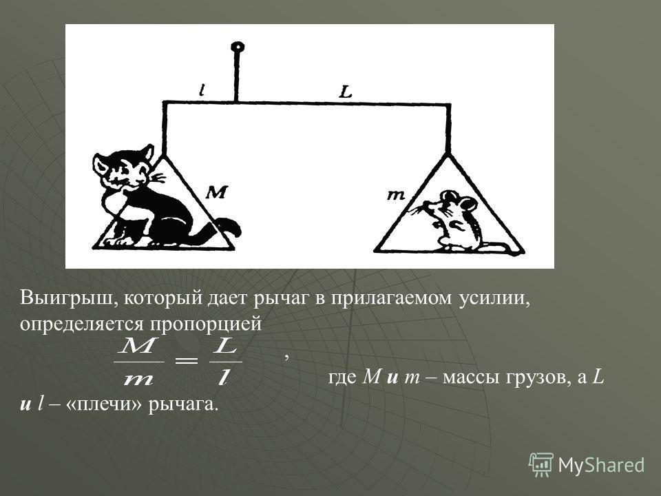 Выигрыш, который дает рычаг в прилагаемом усилии, определяется пропорцией, где M и m – массы грузов, а L и l – «плечи» рычага.