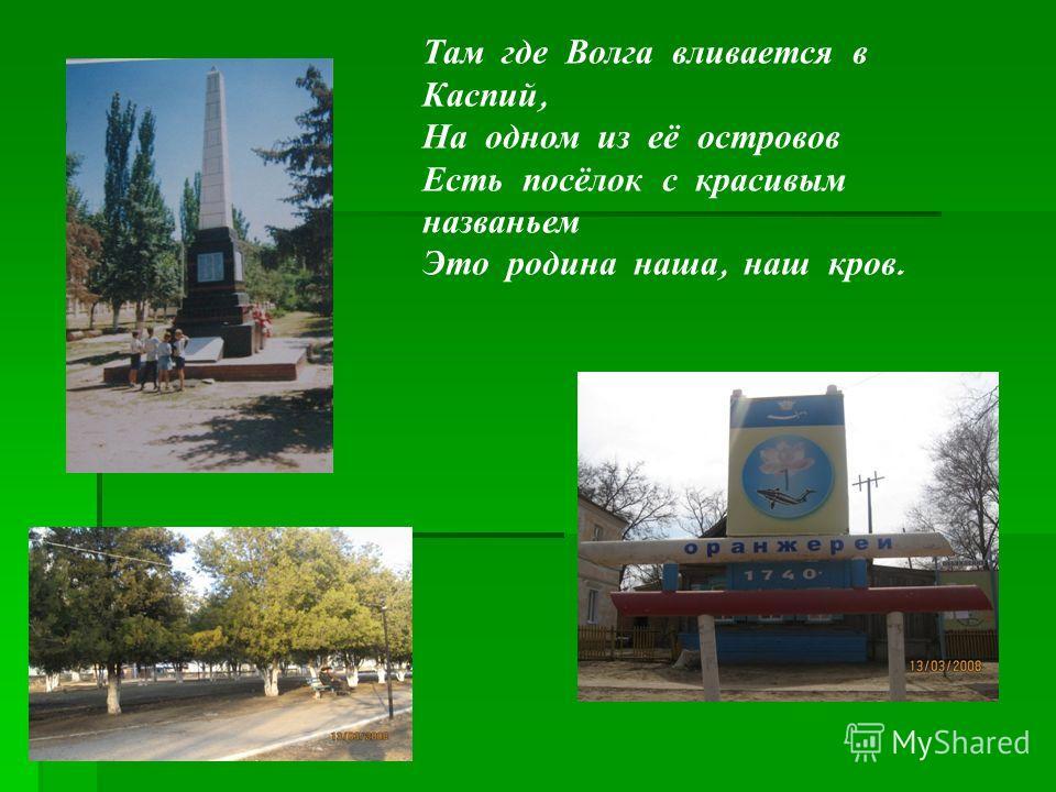 Там где Волга вливается в Каспий, На одном из её островов Есть посёлок с красивым названьем Это родина наша, наш кров.