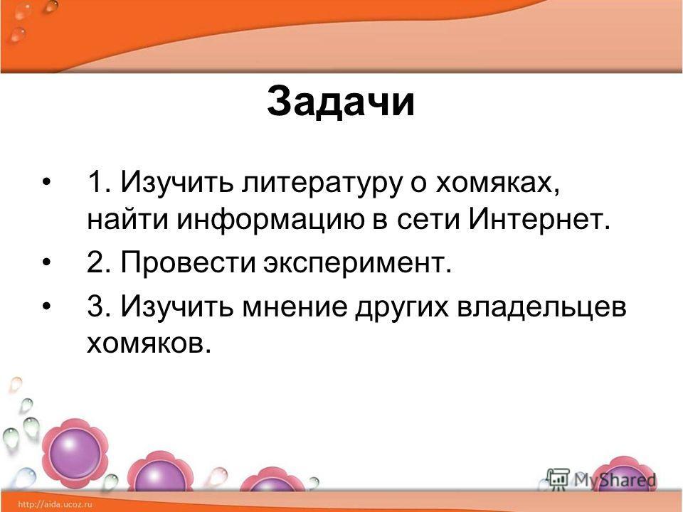 Задачи 1. Изучить литературу о хомяках, найти информацию в сети Интернет. 2. Провести эксперимент. 3. Изучить мнение других владельцев хомяков.