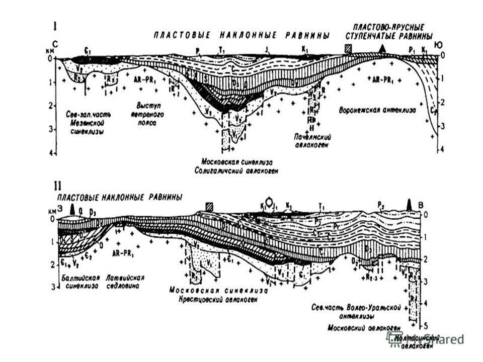 Рельеф и геологическое строение Восточно-Европейская приподнятая равнина состоит из возвышенностей с высотами 200- 300 м над уровнем моря и низменностей, по которым текут крупные реки. Средняя высота равнины 170 м, а наибольшая 479 м на Бугульминско-