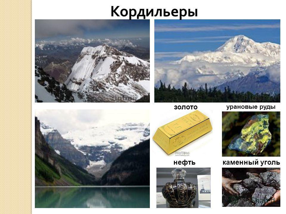 Кордильеры золото урановые руды нефтькаменный уголь