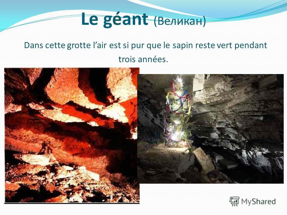 Le géant (Великан) Dans cette grotte lair est si pur que le sapin reste vert pendant trois années.