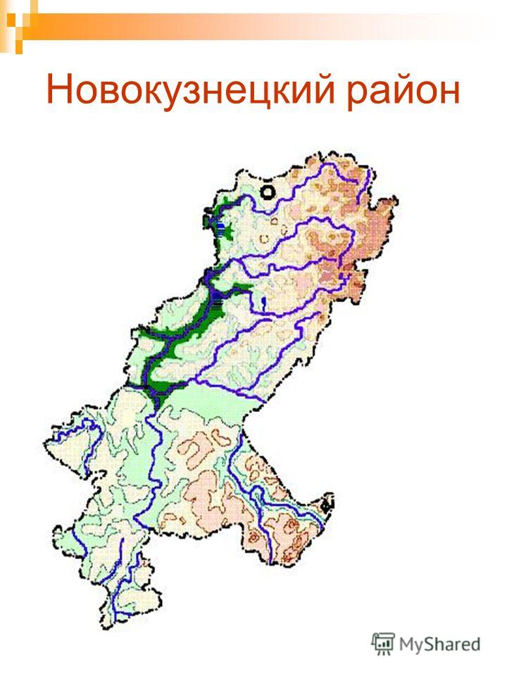 Новокузнецкий район
