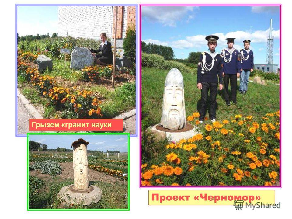 Проект «Черномор» Грызем «гранит науки