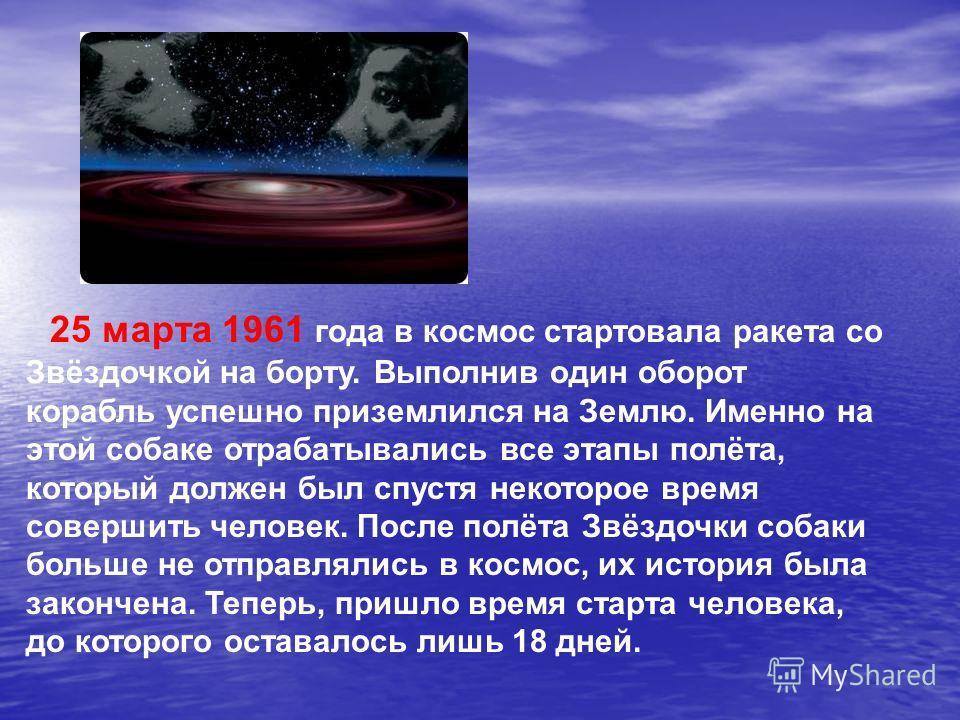 25 марта 1961 года в космос стартовала ракета со Звёздочкой на борту. Выполнив один оборот корабль успешно приземлился на Землю. Именно на этой собаке отрабатывались все этапы полёта, который должен был спустя некоторое время совершить человек. После