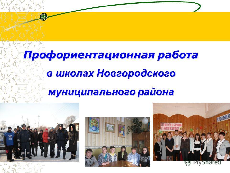 Профориентационная работа в школах Новгородского муниципального района