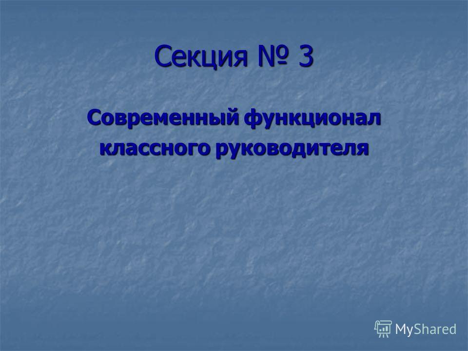 Секция 3 Современный функционал классного руководителя
