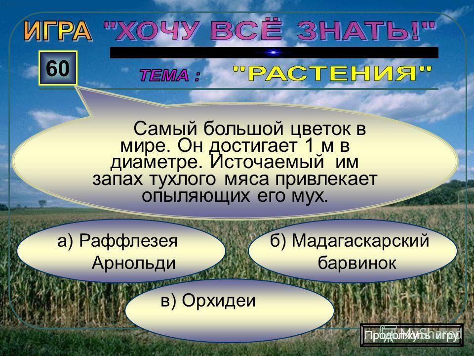 в) Лиственные леса б) Хвойные леса а) Тропические леса 50 Какие леса формируют почвы богатые гумусом? Продолжить игру