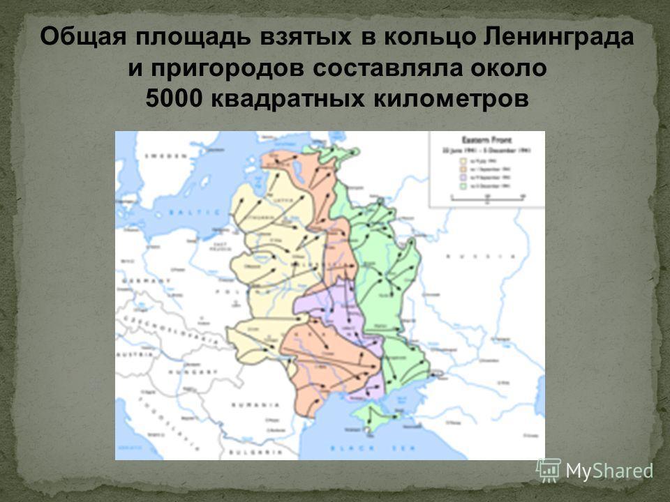 Общая площадь взятых в кольцо Ленинграда и пригородов составляла около 5000 квадратных километров