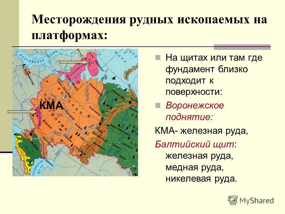 Месторождения рудных ископаемых на платформах: На щитах или там где фундамент близко подходит к поверхности: Воронежское поднятие: КМА- железная руда, Балтийский щит: железная руда, медная руда, никелевая руда. КМА