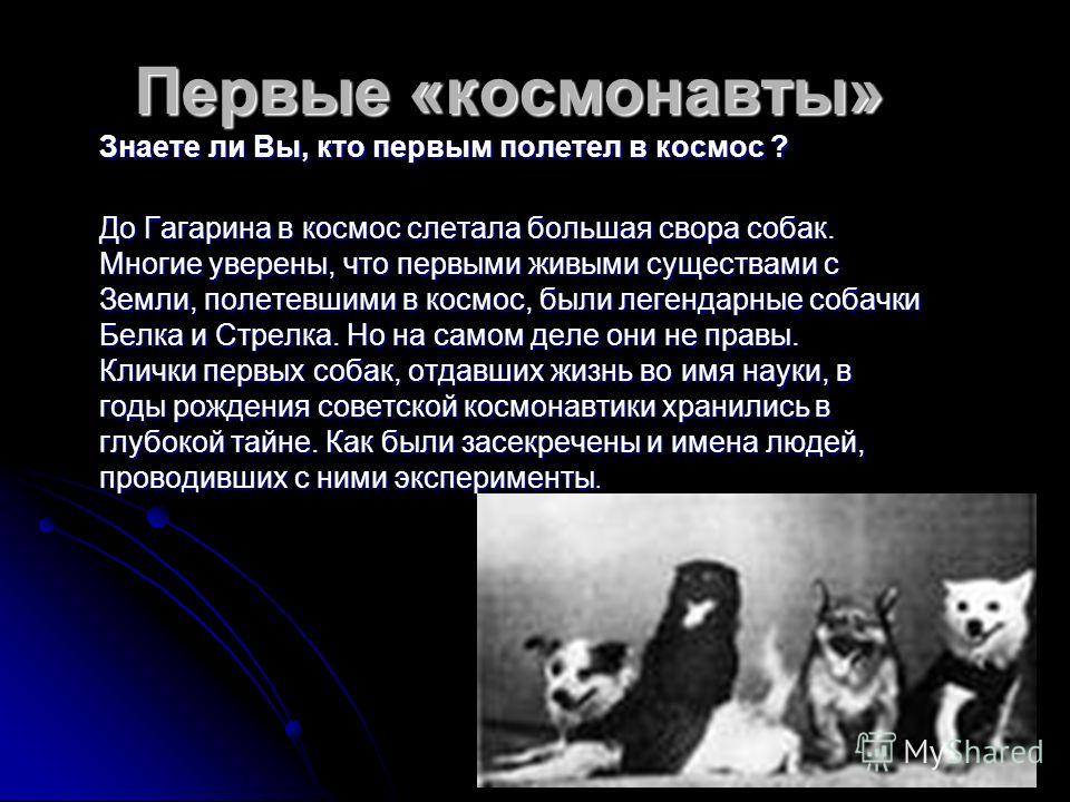 Первые «космонавты» Знаете ли Вы, кто первым полетел в космос ? До Гагарина в космос слетала большая свора собак. Многие уверены, что первыми живыми существами с Земли, полетевшими в космос, были легендарные собачки Белка и Стрелка. Но на самом деле