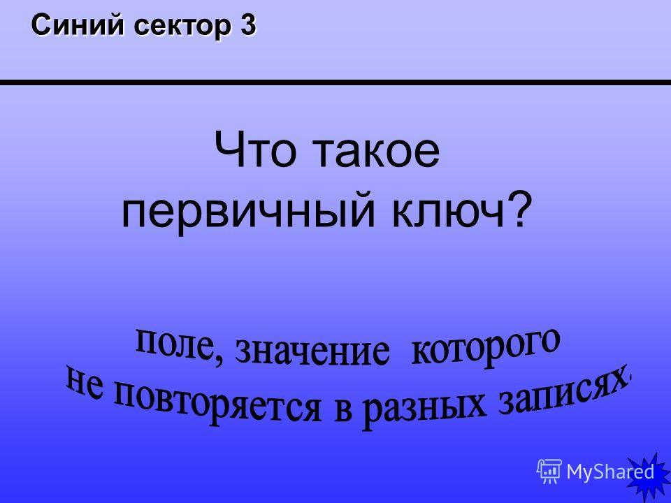 Синий сектор 3 Синий сектор 3 Что такое первичный ключ?