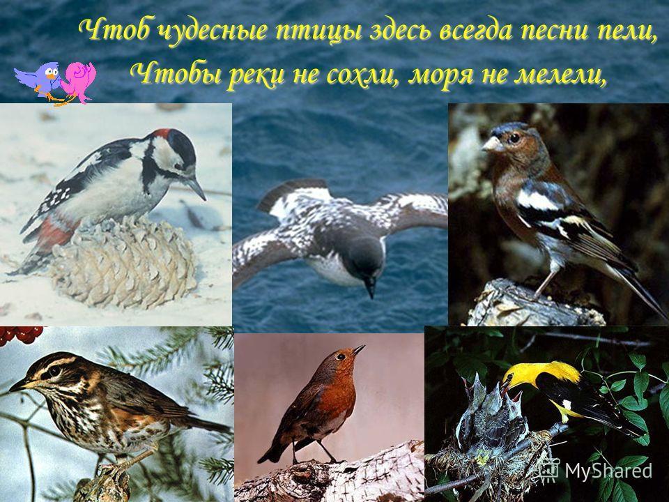 Чтоб чудесные птицы здесь всегда песни пели, Чтобы реки не сохли, моря не мелели,