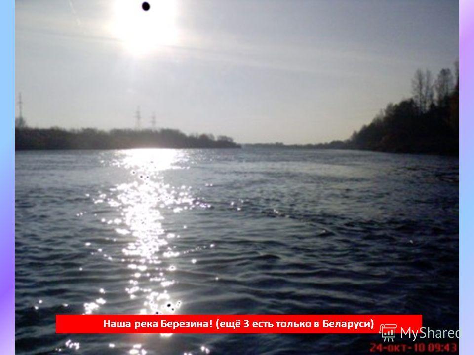 Наша река Березина! (ещё 3 есть только в Беларуси)