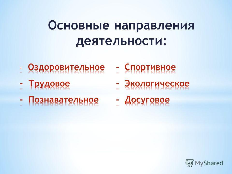 Основные направления деятельности: