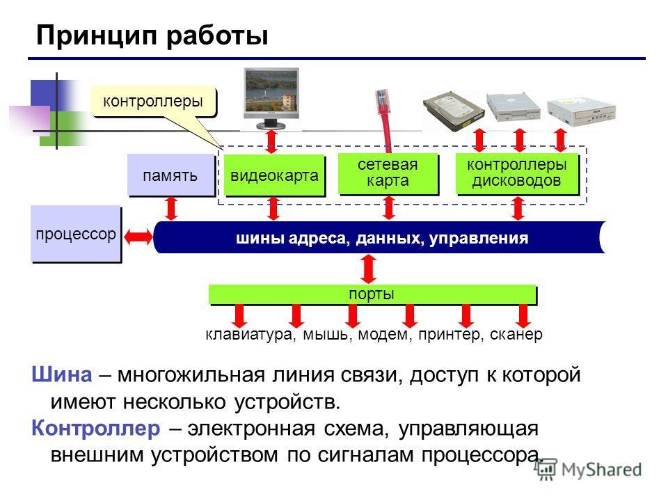 Принцип работы процессор память шины адреса, данных, управления порты клавиатура, мышь, модем, принтер, сканер видеокарта сетевая карта контроллеры дисководов Шина – многожильная линия связи, доступ к которой имеют несколько устройств. Контроллер – э