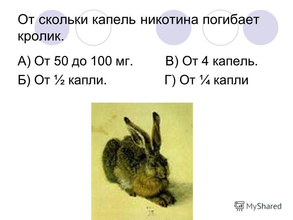 От скольки капель никотина погибает кролик. А) От 50 до 100 мг. В) От 4 капель. Б) От ½ капли. Г) От ¼ капли