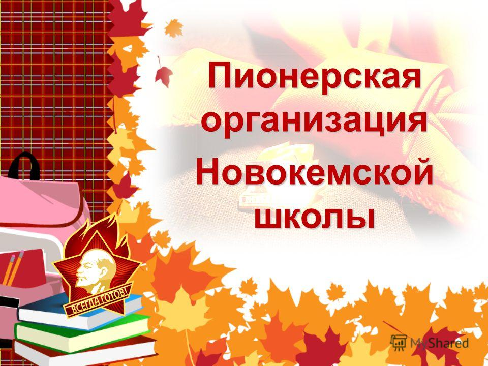 Фотоальбом Пионерская организация Новокемской школы
