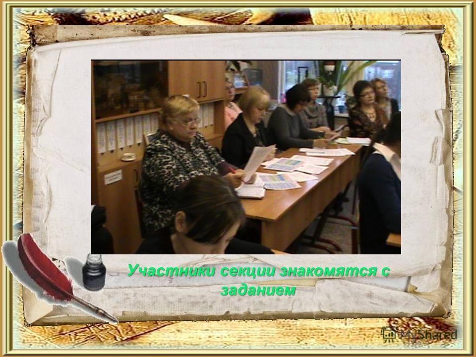 Участники секции знакомятся с заданием