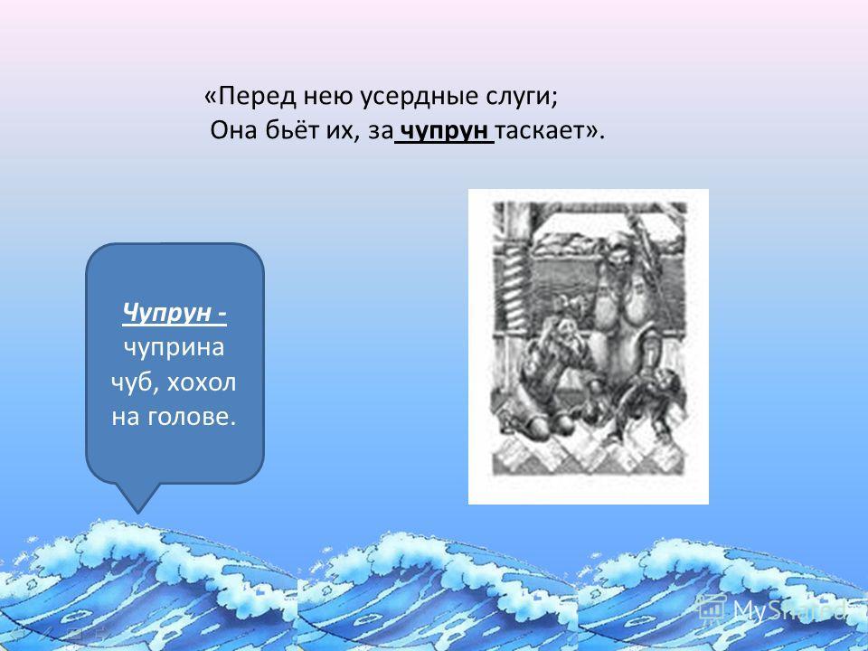 «Сказка о золотой рыбке» «Перед нею усердные слуги; Она бьёт их, за чупрун таскает». Чупрун - чуприна чуб, хохол на голове.