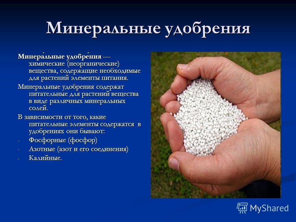 Минеральные удобрения Минеральные удобрения химические (неорганические) вещества, содержащие необходимые для растений элементы питания. Минеральные удобрения содержат питательные для растений вещества в виде различных минеральных солей. В зависимости