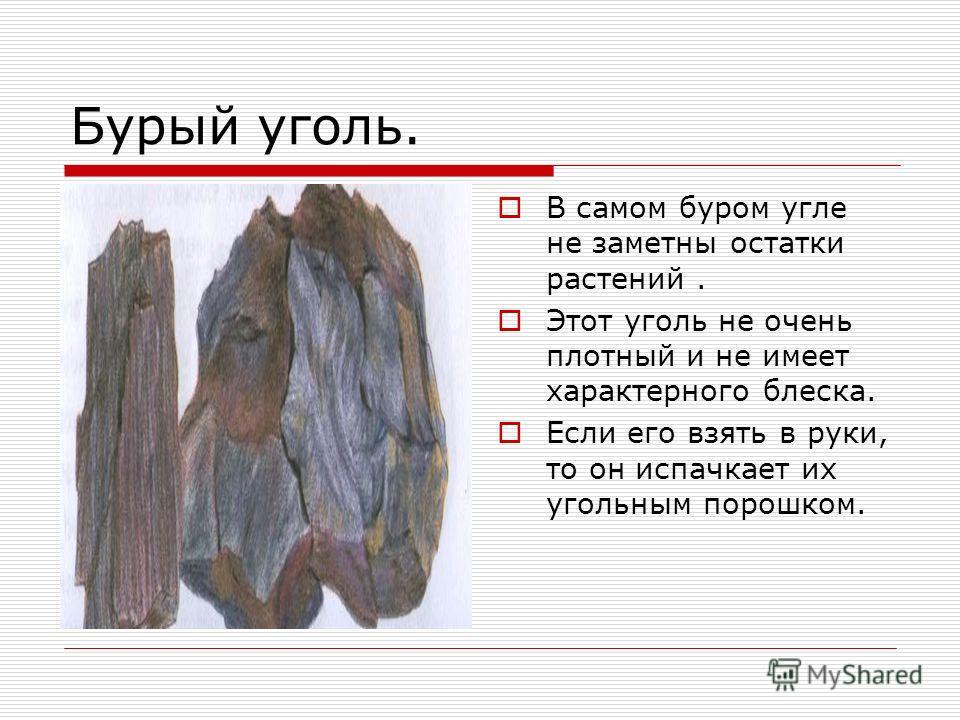 Бурый уголь. В самом буром угле не заметны остатки растений. Этот уголь не очень плотный и не имеет характерного блеска. Если его взять в руки, то он испачкает их угольным порошком.