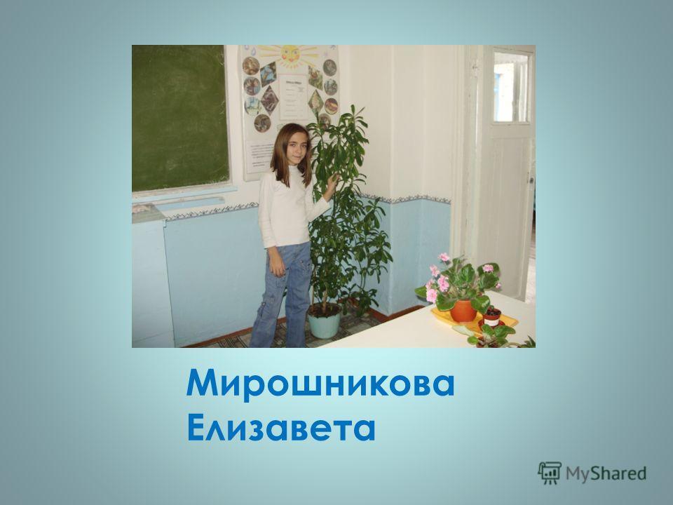 Мирошникова Елизавета