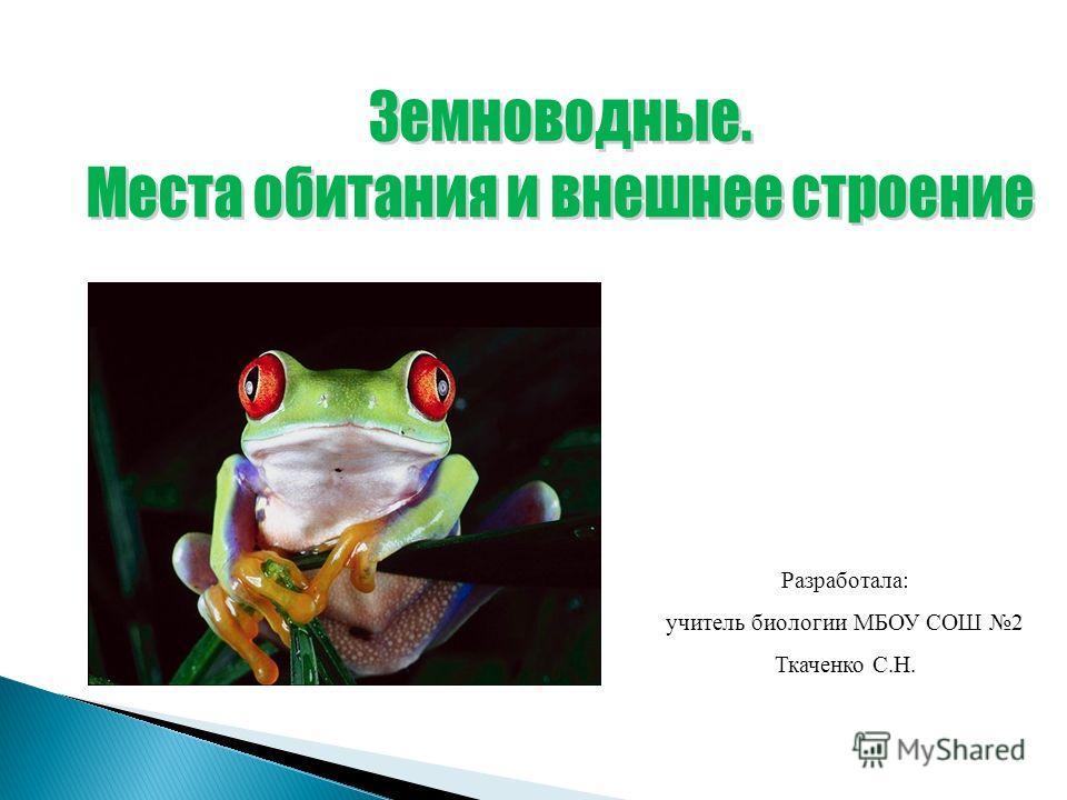 Разработала: учитель биологии МБОУ СОШ 2 Ткаченко С.Н.