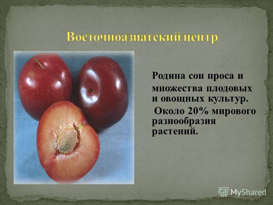 Родина сои проса и множества плодовых и овощных культур. Около 20% мирового разнообразия растений.